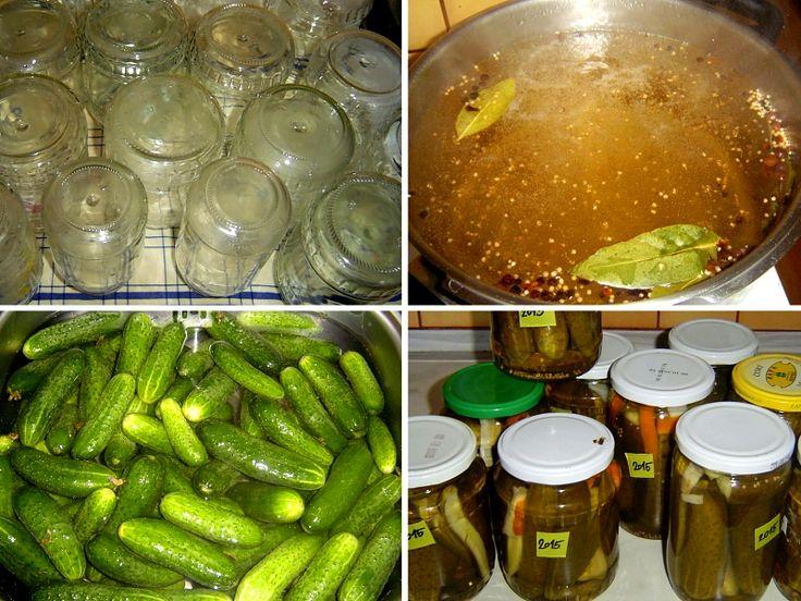 """10 + 1 receptů na okurkový nálev. • Nakládané okurky jsou grunt. • Okurky se zeleninou do bramborového salátu. •Plánujete děťátko? Zavařujte okurky. • Recept na okurkový lák: vyberte si podle libosti. • Archivní recepty na lák """"ze sešitu"""".• Bez kyselých okurek se v kuchyni obejdeme jen těžko. Podáváme je khotovým jídlům, používáme je kpřípravě bramborového salátů, neobešla by se bez nich studená kuchyně, mlsáme je jen tak – znutkavé chuti. Spotřeba okurek je vprůměrné české…"""