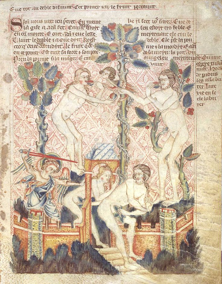 From the Holkham Bible Picture Book of c.1320-30 (on this MS see Image 228), depicting the Fall and Expulsion from Paradise.