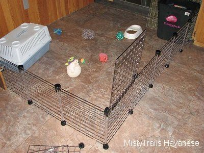 These wire racks are for making boxes or shelves. They also work great for enclosures & 8 best Ideas for puppies images on Pinterest | Whelping box Dog ... Aboutintivar.Com