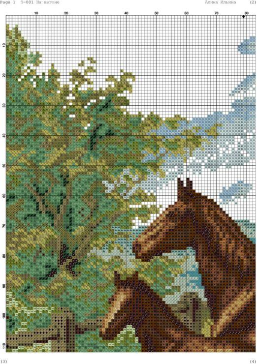 Gallery.ru / Фото #56 - лошади - zhivushaya