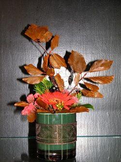 Autumn  - Gerbera daisies.