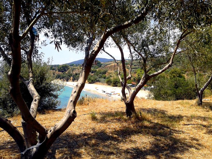 Cezanne-type view...