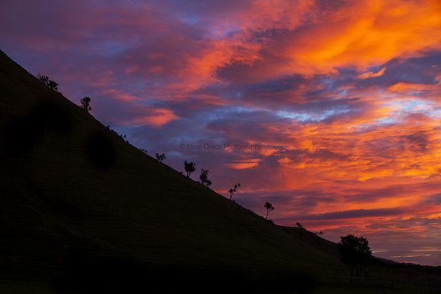 Dawn at Glenburn Station | © Elyse Childs Photography