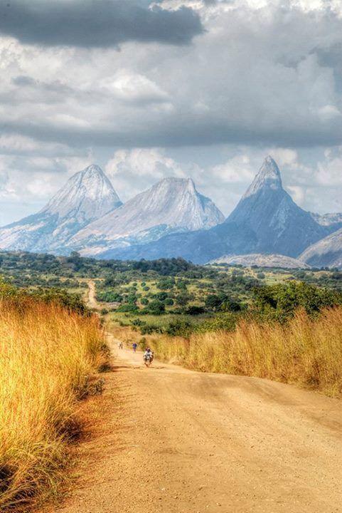 Namina Mountains - Zambezia Province-Mozambique
