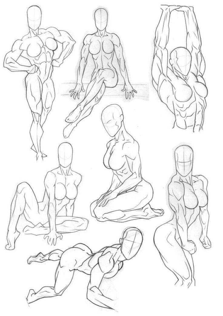Sketchbook Anatomy Reference by Bambs79 on DeviantArt