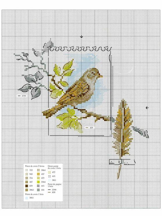Gallery.ru / Фото #50 - Oiseauz, papillons et petites betes - Chispitas