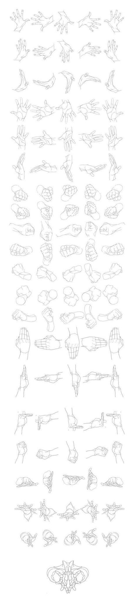 Hand Drawing Reference Guide | Drawing References and Resources | Scoop.it