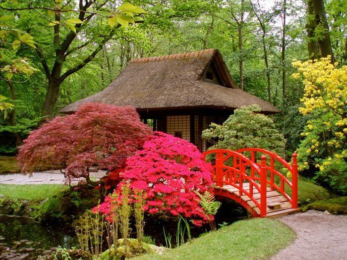 Quando se fala em jardins, os japoneses devem ser lembrados. Veja o por quê!