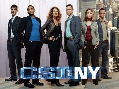 CSI New YorkFavorite Tv, Csi Ni, Csi Ny, Csini, Tvseries, Tv Series, Csi Miami, Csi New York, Newyork