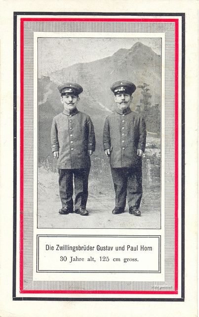 """Dwarf twin brother circus performers """"Gustav and Paul Horn"""" 125 cm tall picture postcard from 1915."""