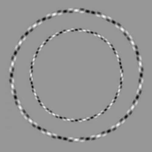 Illusion d'optique, 2 cercles parfaits, mais la couleur de fond et le motif utilisé pour tracer les cercles donne l'illusion qu'ils ne sont pas rond.