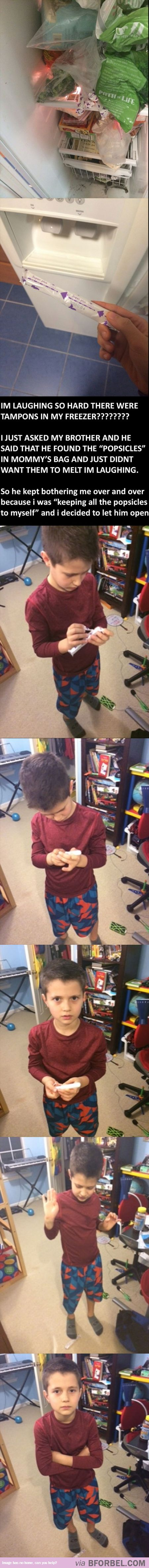 Little Brother Learned About Tampons The Hard Way…haha, omg, poor kid! It was a sweet gesture though.