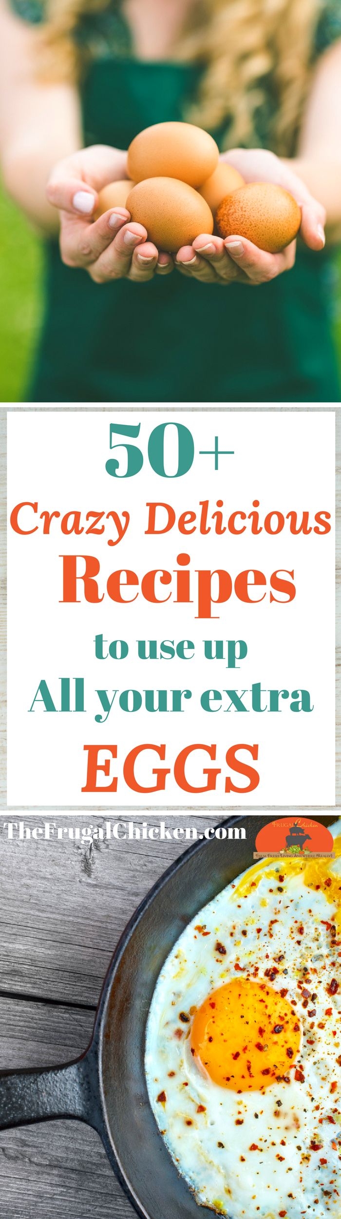 Got eggs? Maybe too MANY eggs? We tried a ton of recipes, and these are the best - your mouth will thank you.