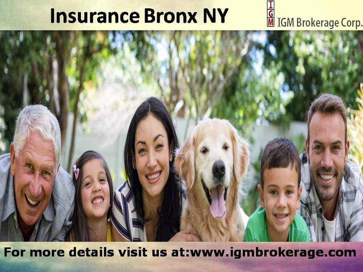 Looking for best insurance company? So the answer is IGM Brokerage, here we provide all kinds of insurance like Commercial (home building, health, business, workers compensation, home renters, Umbrella Insurance. For more details visit us.