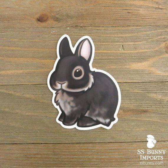 Explore Custom Vinyl Die Cut Sticker 3 x 3 Durable Dishwasher-Safe//UV Protected