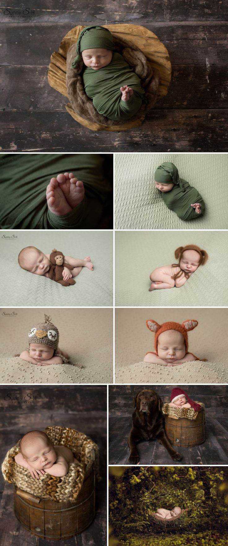 Woodlands theme newborn photo session in studio. Sunny S-H Photography Winnipeg