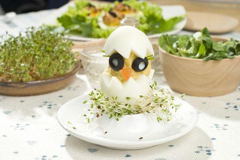 Potrawy z jajek - Smaczna Strona - Tesco