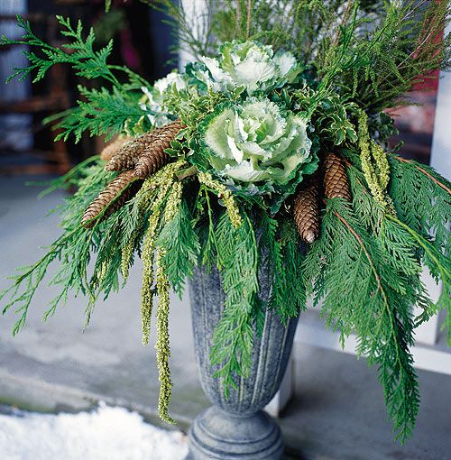A sleek metal container holds an arrangement of ornamental cabbage, cedar, pine cones, yellow amaranth and Italian pittosporum, a tender green best suited to indoor use.