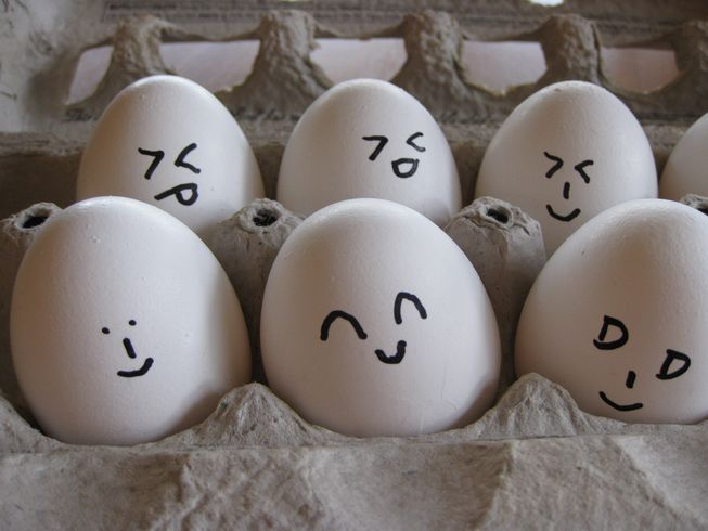 Curious about egg nutrition? Once feared because of cholesterol, eggs are now prized for their nutritional value and considered by some to be the gold standard of protein sources.