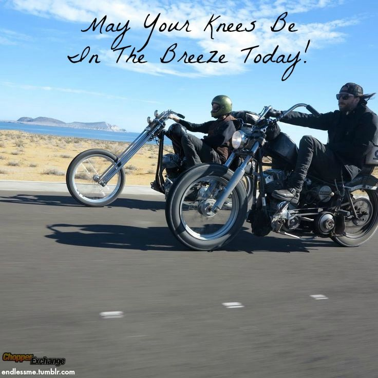 507 Best Images About Biker Quotes On Pinterest