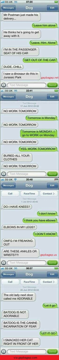 Top 4 #Hilarious Text Messages By Funny Dog
