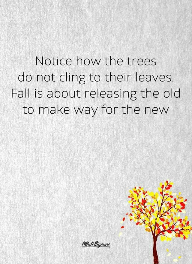 Fall is about releasing the old in order to make way for the new.