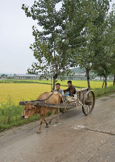 Daily life in the countryside - North Korea