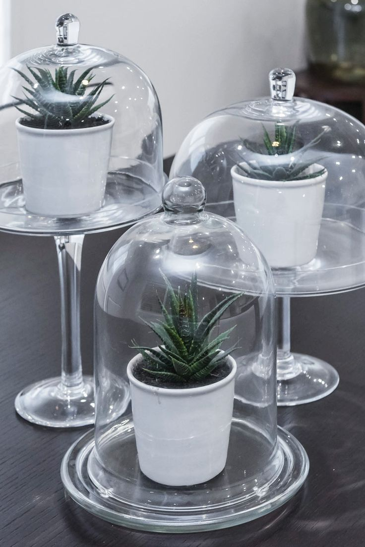 #Alfresco #inspired #outdoor #table #setting. these #bell #jars are perfect for growing herbs or smaller plants.
