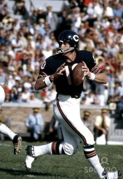 chicago bears history essay Pittsburgh steelers history including past stats and statistics, results, scores, rosters and draft results.