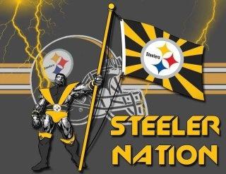 SN: Steelers Football, Steelers Signs, Steelers National, Pittsburgh Steelers Penguins, Steelers Fans, Steelers Haven, Pittsburgh Steelers Oh, Steelers Girls, Steelers Fanat