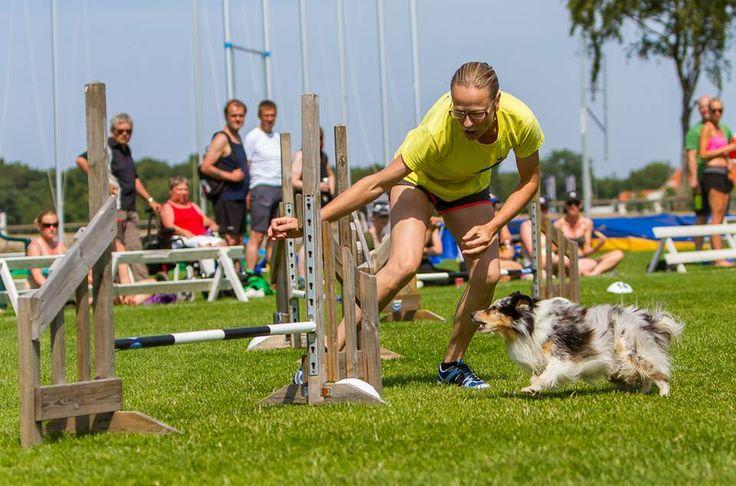 """Josefin Carlsson: """"Sen vi började med Nutrolin Sport tycker jag att hundarna känns fräscha och pigga mycket snabbare än innan efter en tuff tävlingshelg. Sport-oljan är förpackad i en mycket behändig flaska som går att hälla ifrån utan att kladda. Flaskan skyddar dessutom oljan från solljuset vilket är perfekt. Jag kan varmt rekommendera er att använda Nutrolin Sport till era aktiva hundar. Ser även framemot att testa Skin & Coat för att ytterligare förbättra hundarnas päls, hud och klor."""""""