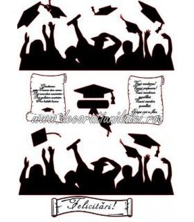 Siluete absolventi