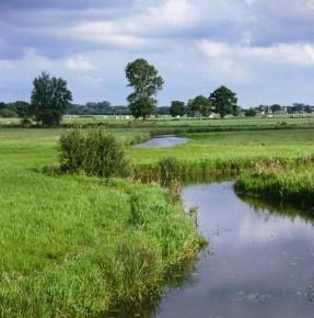 Op de grens tussen Overijssel en Drenthe slingert de Reest door het landschap. Het dal waar de Reest door stroomt wordt het Reestdal genoemd. Een eeuwenoud en kleinschalig cultuurlandschap met bos, heide, hooilanden en oude boerderijen. Waar in Nederland vind je nog zo'n ongeschonden beekdal? Het spannende gevoel om elk moment wilde dieren te kunnen spotten mag je niet missen! Breng een bezoek aan het Reestdal en ervaar dit unieke gebied.