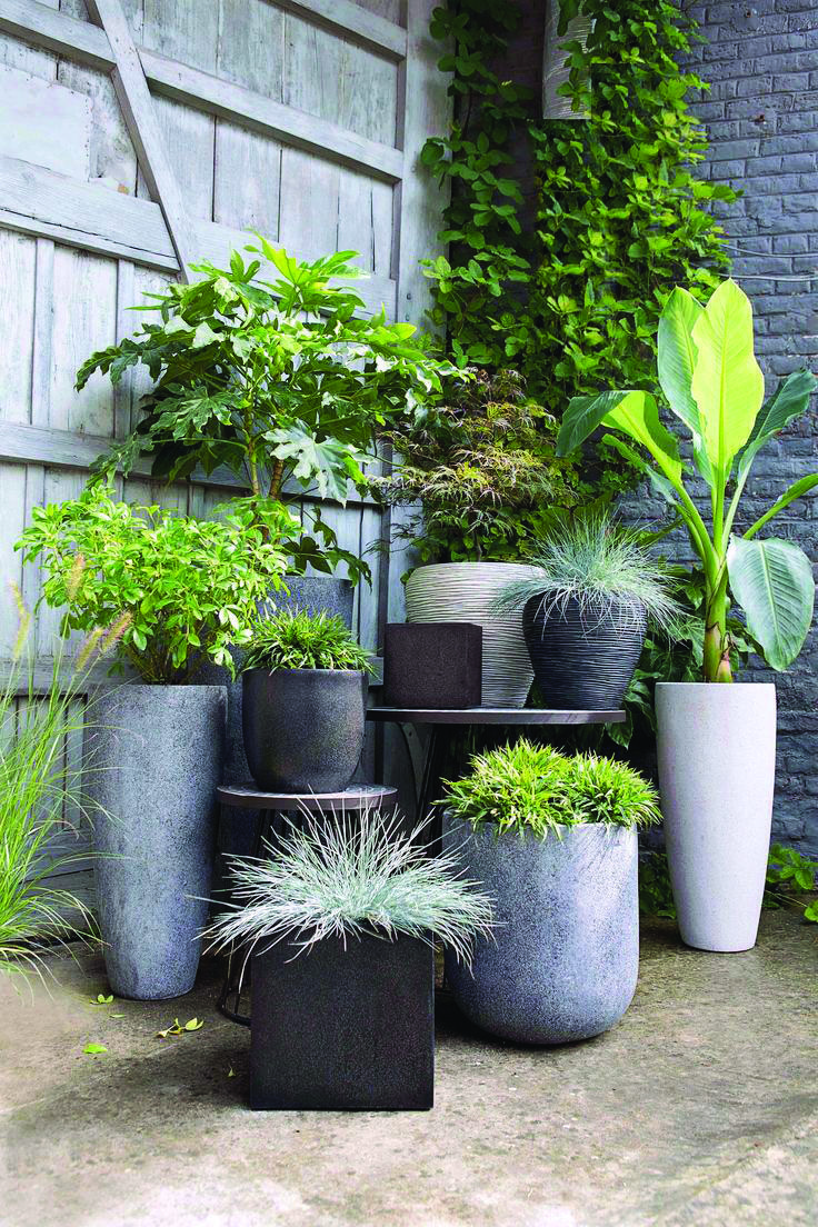 275dc6096798cfb9b81566b2fae3d5d1 - What Is The Purpose Of Terrace Gardening