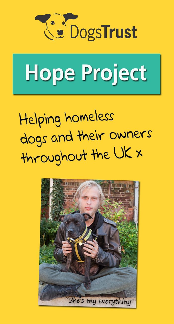Our #HopeProject provides vet care for dogs whose owners are homeless or in housing crisis. www.dogstrusthopeproject.org.uk