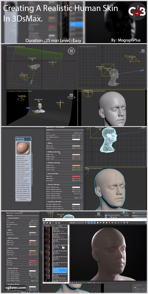 vray 3ds max 2019