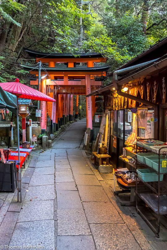 Kyoto Find cheap flights at best prices : http://jet-tickets.com/?marker=126022