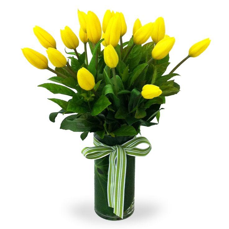 Que maravilla! tulipanes amarillos,encuentralo en nuestra pagina www.floreriasumonte.cl con el nombre de Berberis.