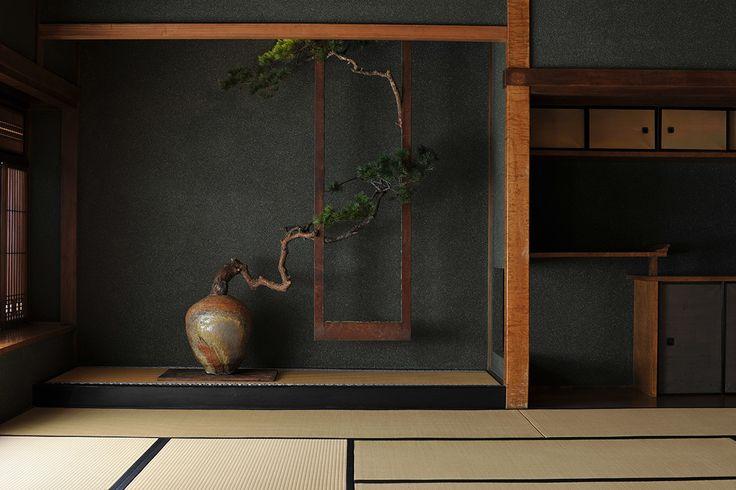Gallery | Naoki Sasaki