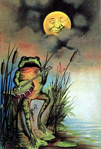 The Frog Who Longed for the Moon