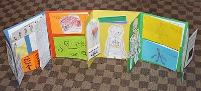 Lapbook about the #humanbody #notebooking
