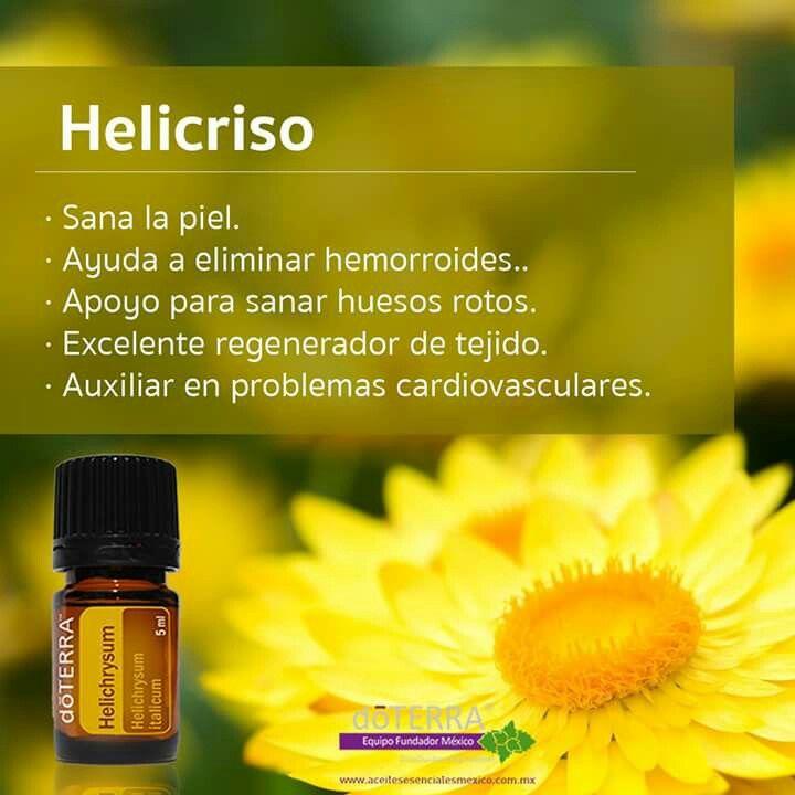 Propiedades aceite de Helicriso