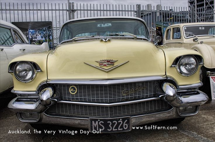 Classic Cadillac        Auckland, the Very Vintage Day Out. ... 28  PHOTOS        ... Aucklanders welcome to The Very Vintage Day Out 2017. It is running at Shed10        More details:         http://softfern.com/NewsDtls.aspx?id=1138&catgry=7            #WW2 jeep, #Very Vintage Day Out, #1942 Ford GPW, #Ford Mustang 1965, #Classic 1968 Chevrolet Chevelle Malibu, #photos by SoftFern, #Dodge Charger