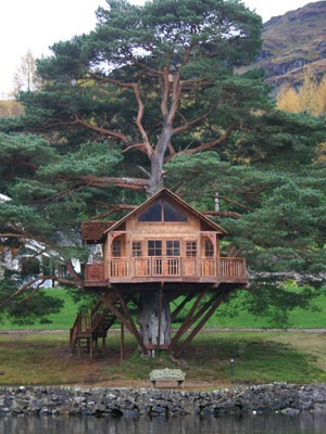 lakeside. conifer. porch. wide windows. : Gardens Treehouse, Dreams Home, Treehouse Tre, Trees Houses Awesome, Tree Houses, Sick Treehouse, Big Trees, Trees Home, Treehouse Lakeh