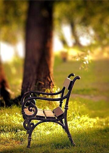 ((Open Rp))*I sit on a bench reading and smiling at the same time *