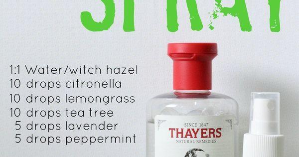 DIY Bug Spray | Peppermint, Sprays and All.
