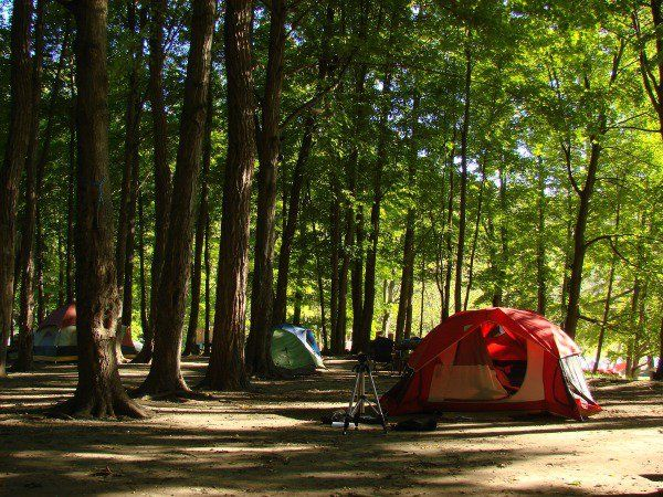 Your Camping Menu Primer (With 50  Food Ideas!)