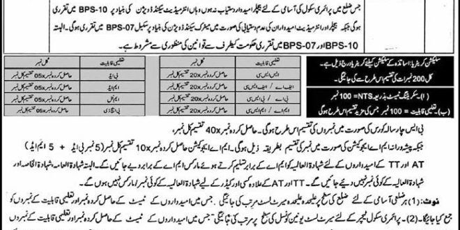 KPK Elementary and Secondary Education Department NTS Jobs