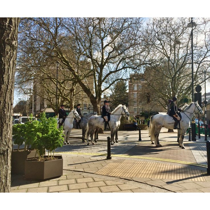 Today we recommend: a coffee at the Daylesford Parklet on The Pimlico Road (@pimlicord) and then a gentle stroll around the corner to John Adams Fine Art to view the Gallery's current colourful exhibition.