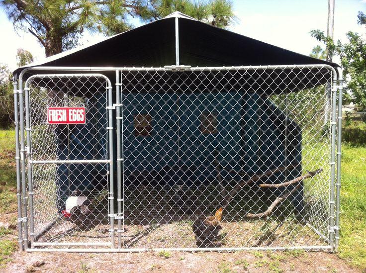 Dog kennel coop chickens pinterest pictures of for Affordable dog kennels